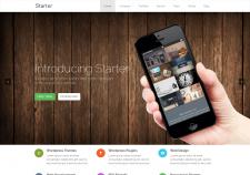 Starter   Responsive Free Onepage WordPress Themes
